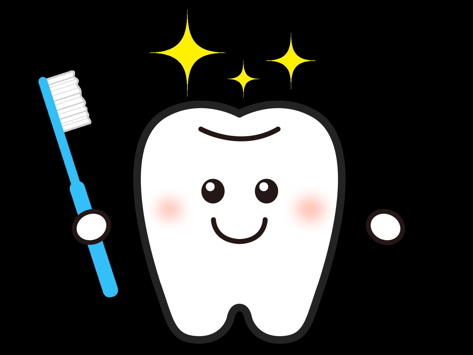きれいな歯